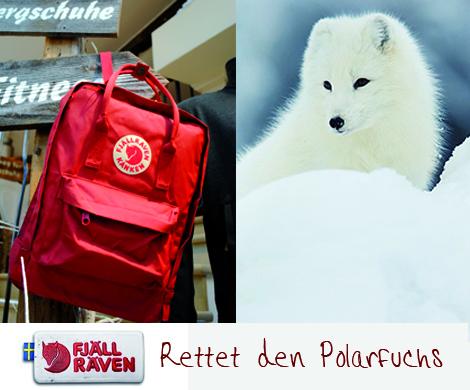 Fjällräven Rettet den Polarfuchs